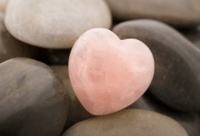 Read more about the article Mindfulness and Compassion