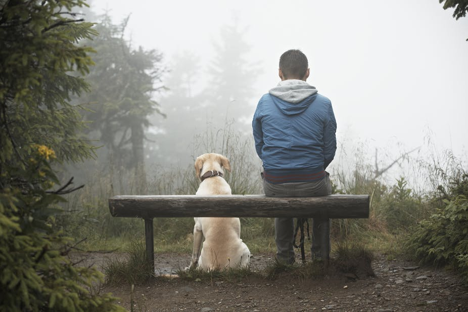 You are currently viewing Grieving the Loss of a Pet