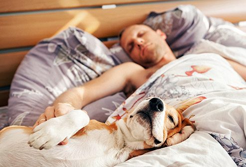 Read more about the article Sleep Problems