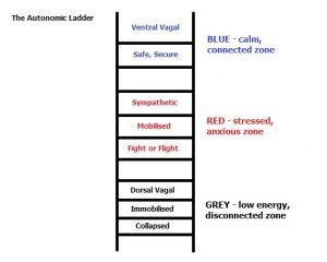 Read more about the article The Polyvagal Ladder